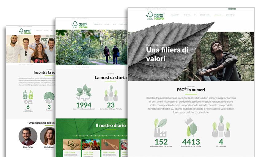 Bilancio digitale FSC-Italia